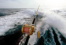 Big Game Fishing competition ins Jezera,Insel Murter